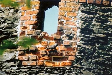 """""""Patschkauer Dohle"""" an der Stadtmauer"""