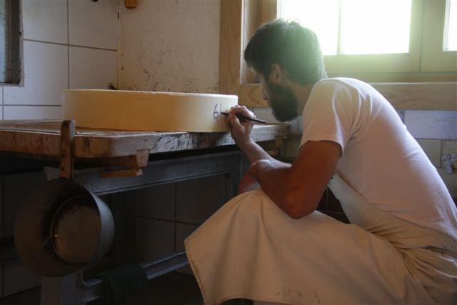 Käsenummerierung