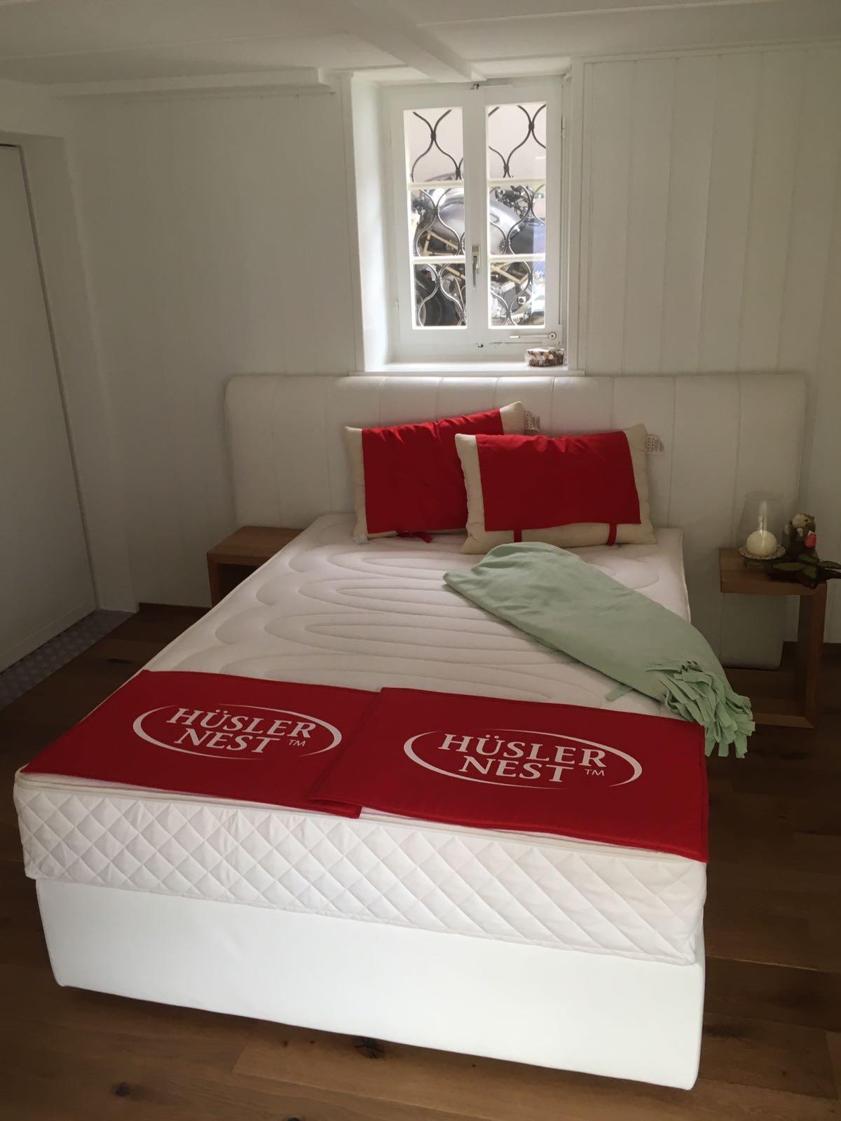 Dream Swiss Polsterbett Leder