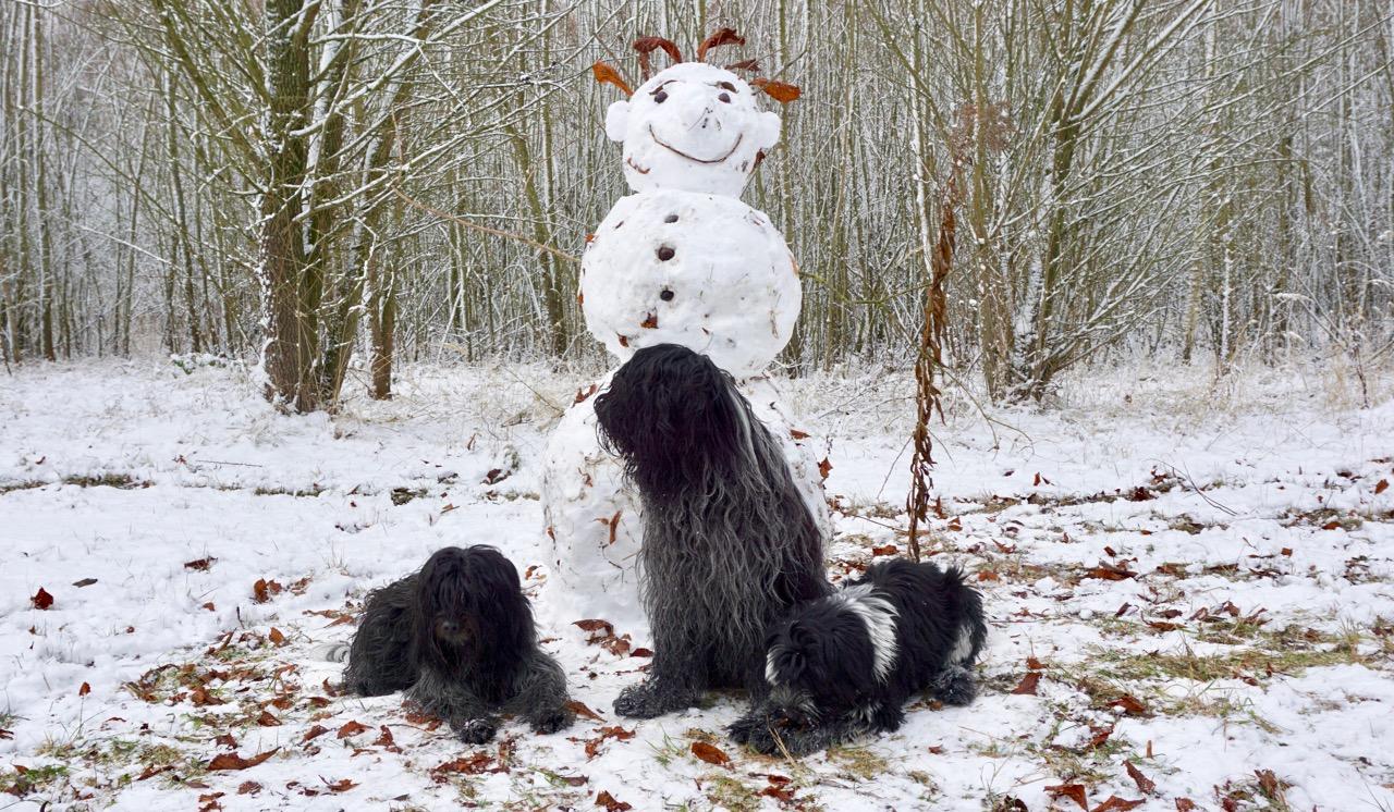 Unser erster Schneemann
