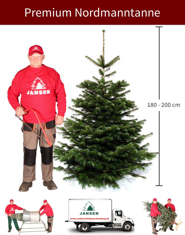 Weihnachtsbaum entsorgen hamburg 2018