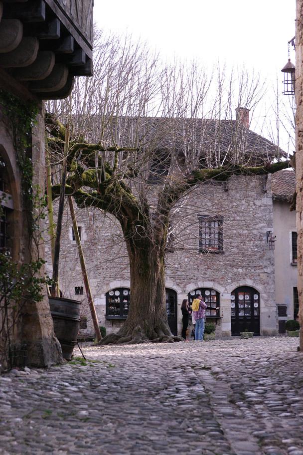 Le tilleul planté avant la Révolution ! C'est un site classé.