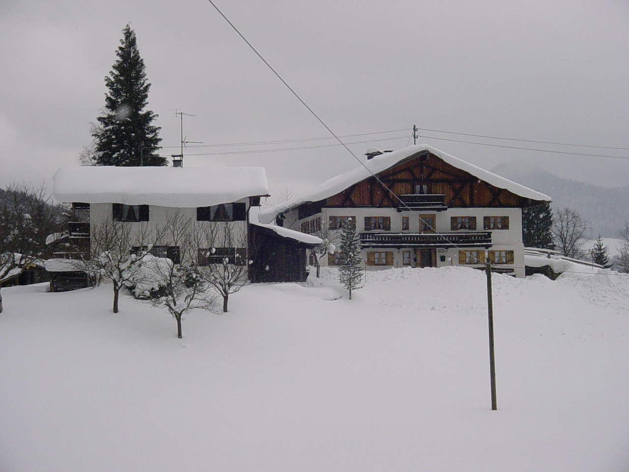Greinhof Birkenstein - Auch im Winter ist es schön bei uns