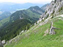 Greinhof Birkenstein - Wendelstein