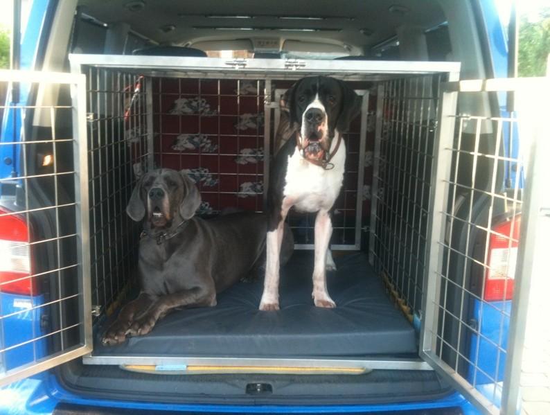 Elly Plus Kenneleinlagen in höchster Qualität - für jede Hunderasse und jede Hundebox - robust, hygienisch, gesund