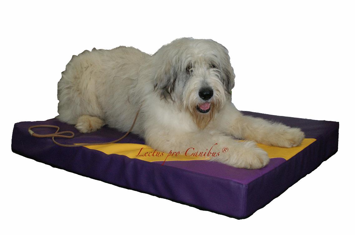 Lectus pro canibus® fertigt Hundebetten für jede Hunderasse