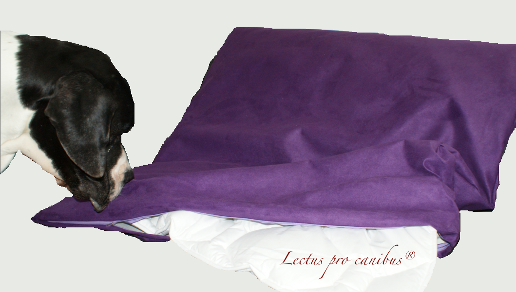 Hundedecken und Bezüge in verschiedenen Größen und Farben