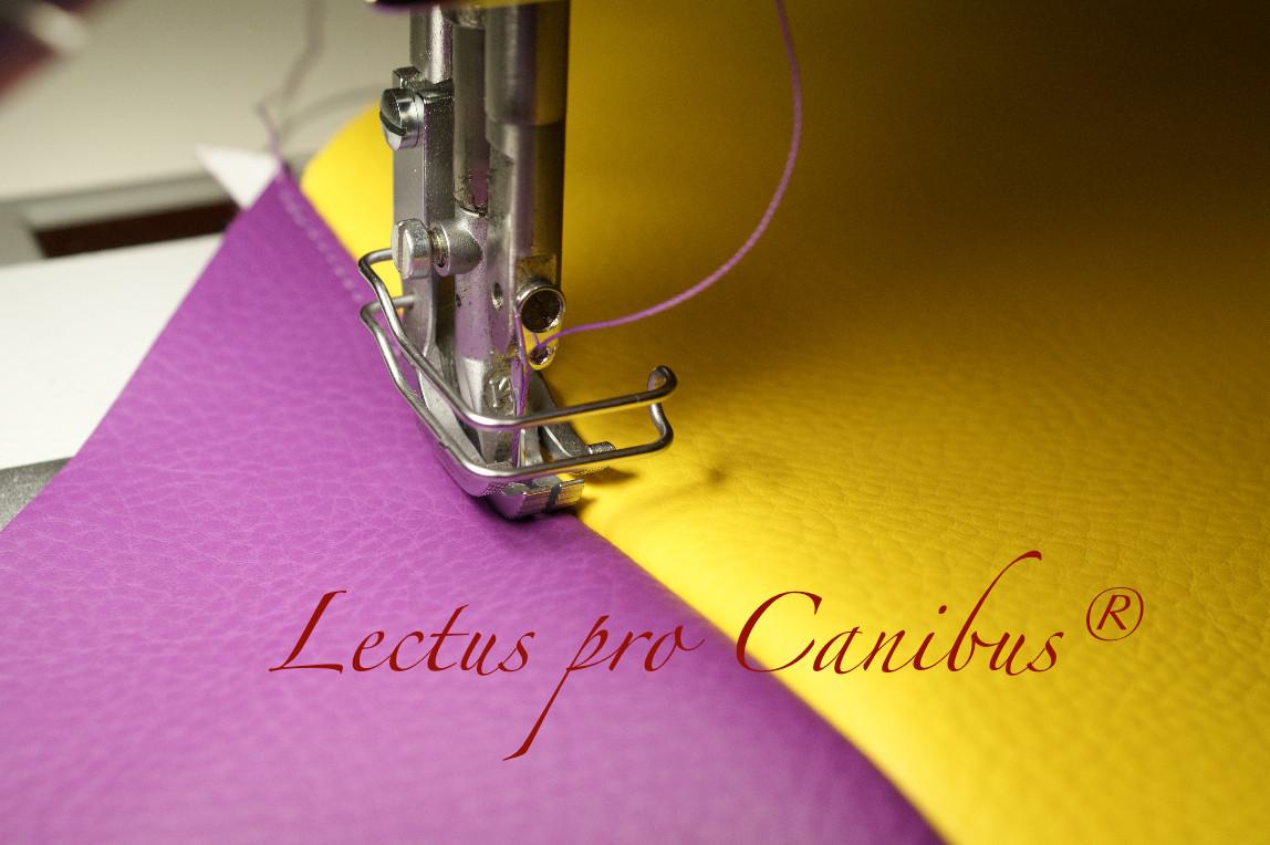 Hundebetten aus Kaltschaum und Viskoschaum mit Kunstlederbezug in vielen Farben und Größen von Lectus pro canibus® aus dem Hause Gesunde Hundewelt