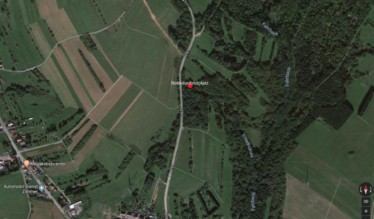 Lage der Abholzung an der L 297 nach Ottweiler