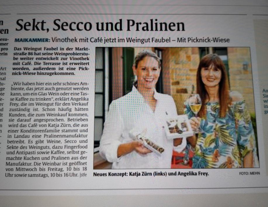 Mein Artikel in der Rheinpfalz vom 11.07.2020