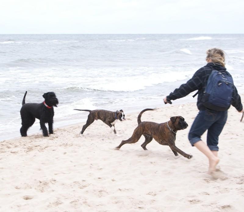 Am Strand, treffen wir den Jägermeister.
