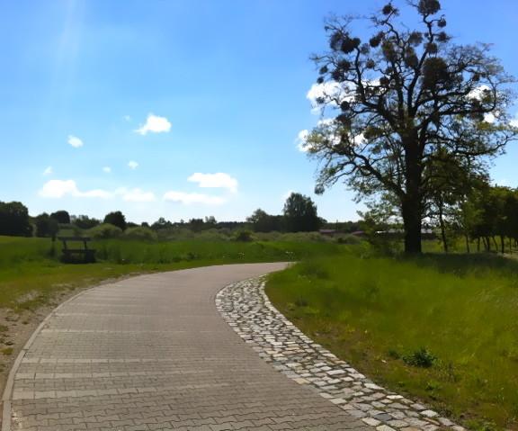 Gut ausgebaute Radwege machen das Radfahren zum Vergnügen