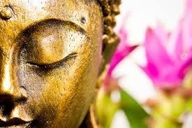 """"""" Tout ce que nous sommes, est le résultat de ce que nous avons pensé """"  Bouddha"""