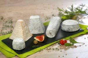 fromages-chèvre-Touraine-Vallée-Loire-Tours-gastronomie-specialités-culinaires-Rendez-Vous-dans-les-Vignes-Myriam-Fouasse-Robert