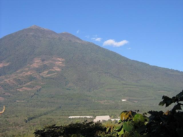 アカテナンゴ火山 東斜面