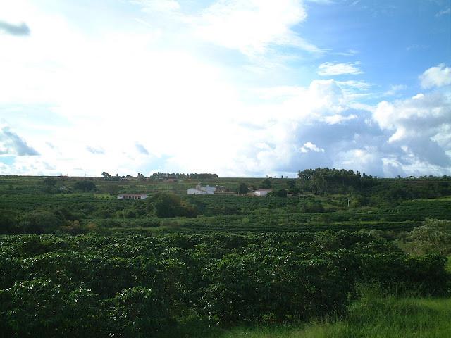 シーマ農園
