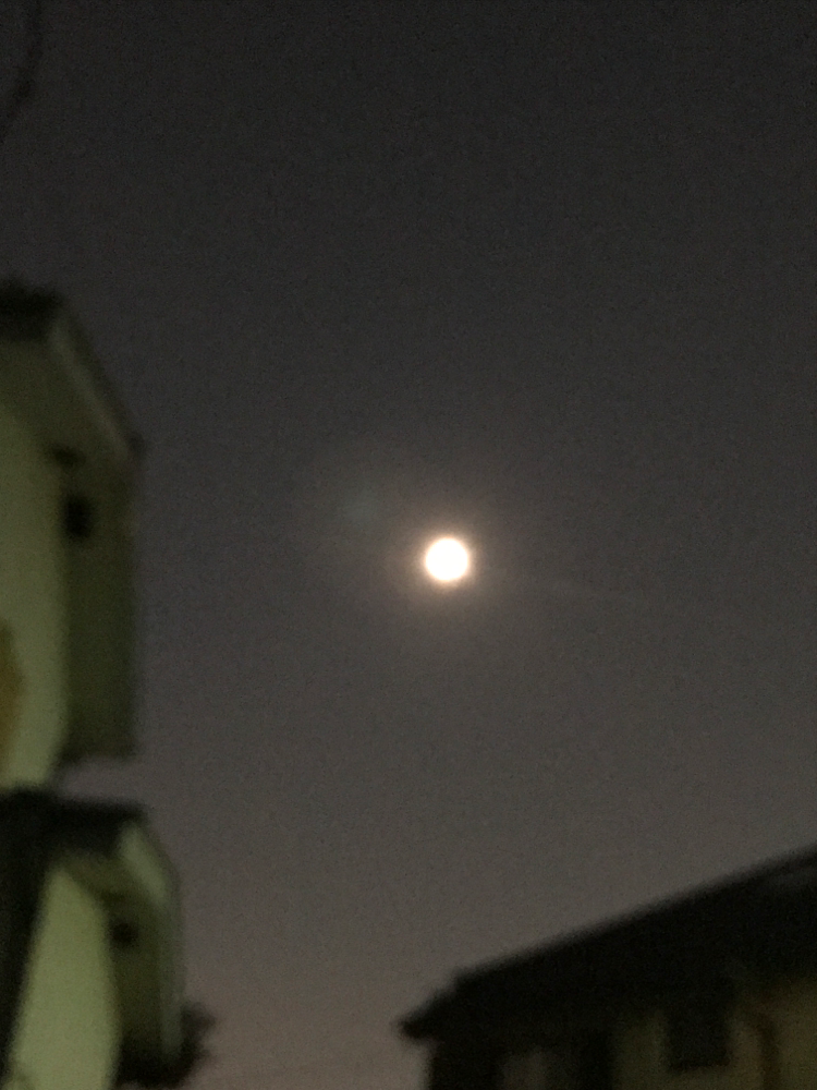 七夕の日の月
