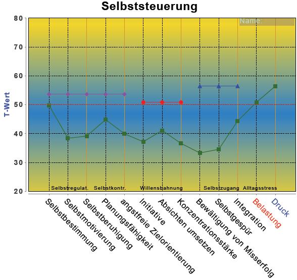 """Testergebnis """"Selbststeuerung"""" (PSI-Diagnostik)"""