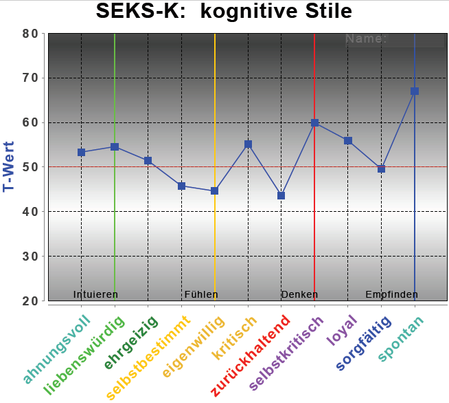 "Testergebnis ""kognitive Stile"" (PSI-Diagnostik)"