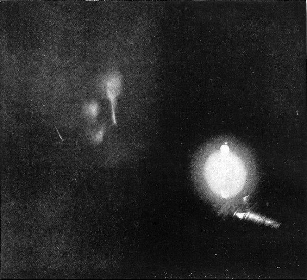 Fig. 3. — First photograph ever taken by phosphorescent light. The face is that of Mr. Tesla, and the source of light is one of his phosphorescent bulbs. Time of exposure, eight minutes. Date of photograph January, 1894.