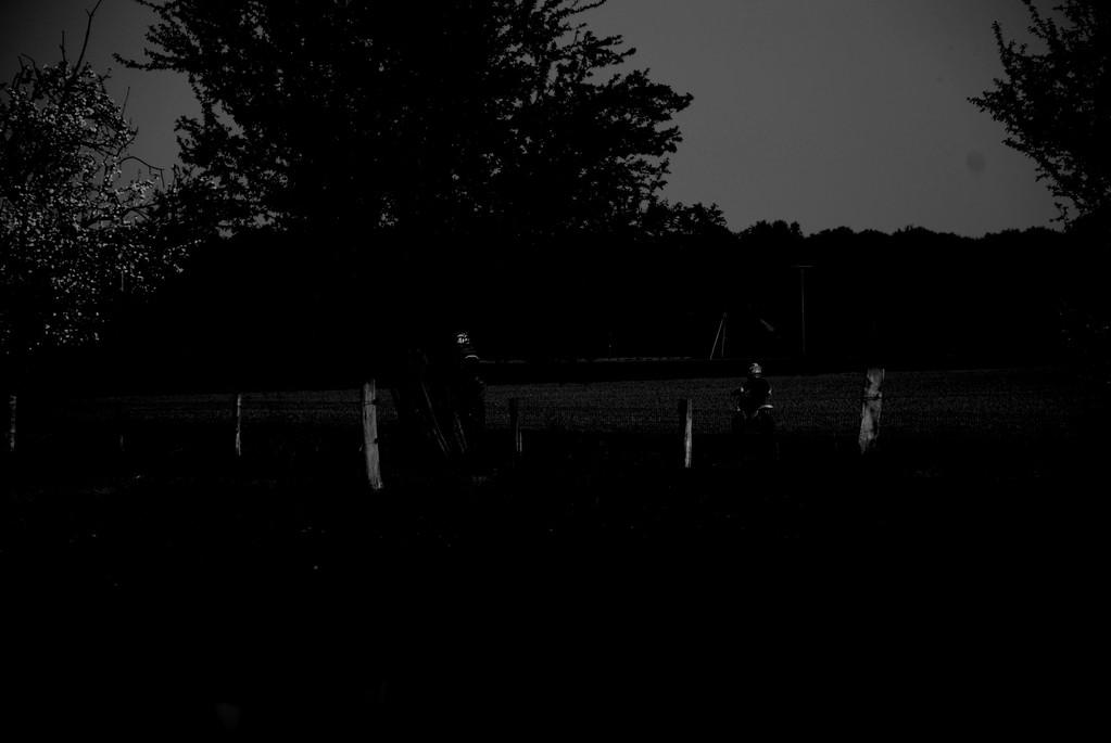 Warum Ist In Der Nacht Alles Grau?