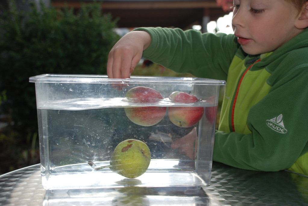 Apfel schwimmt, Birne sinkt - Nela forscht - Naturwissenschaft für ...