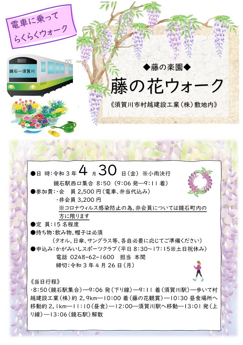 【4/30(金)】藤の花ウォーク(藤の楽園・須賀川市)