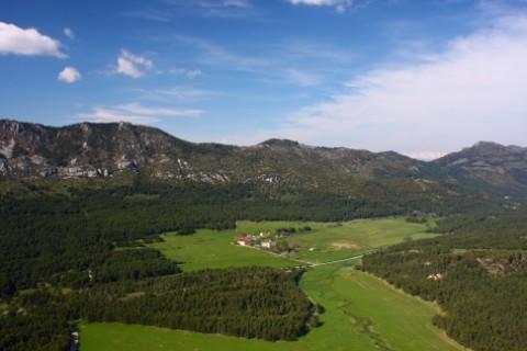 Le Parc des Bisons - Domaine des Monts d'Azur