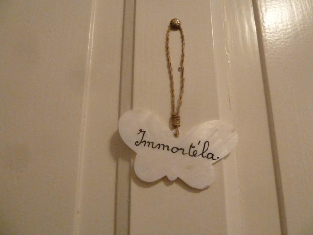 Immortela = edelweiss