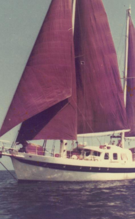 S.Y. Argo 17,50m LüA