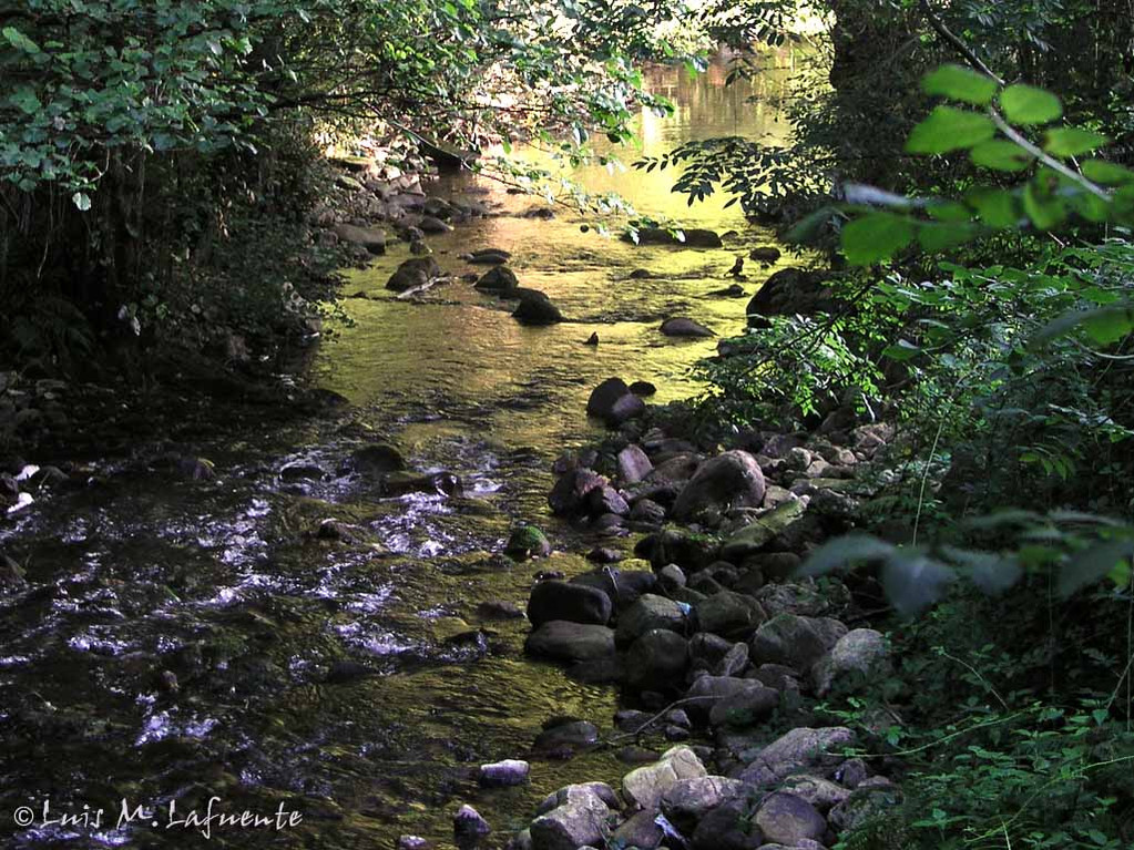 Rio Nonaya..