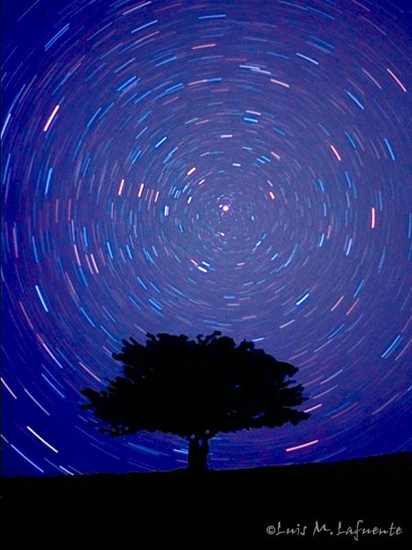 Estrellas Polar y Circumpolares