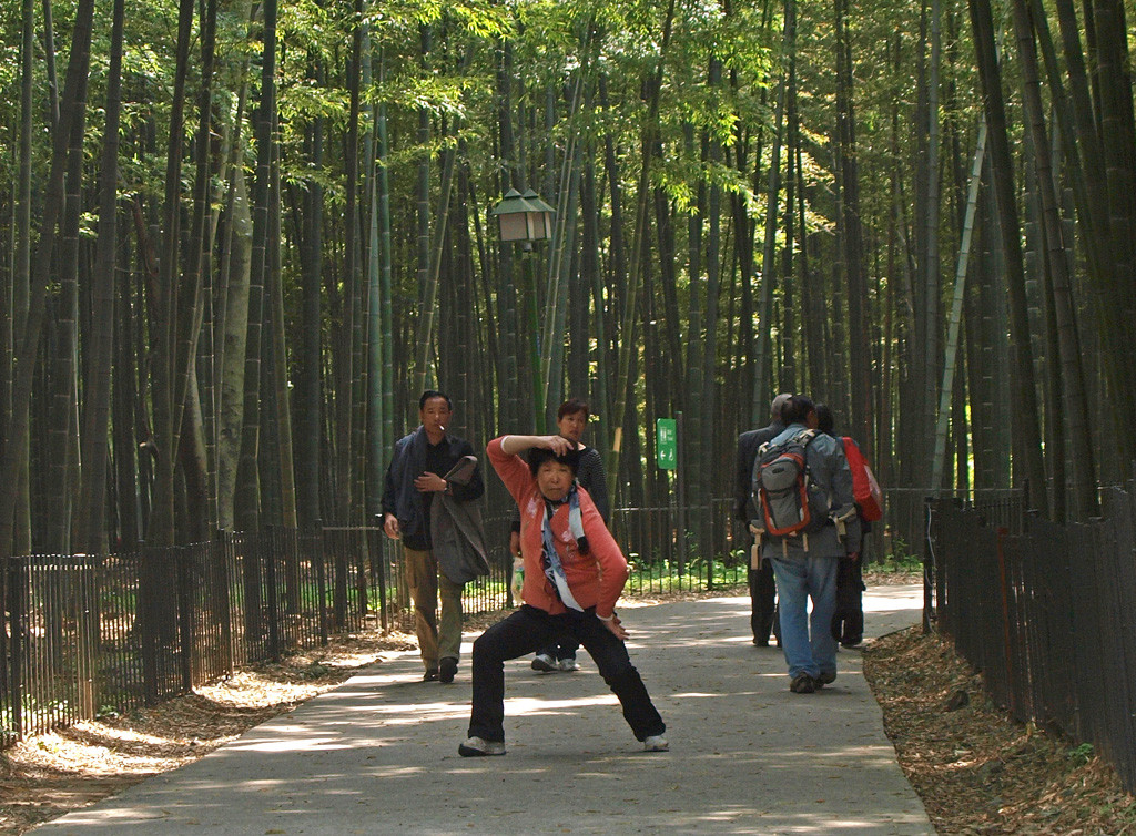 Hangzhou, Jardín botánico de Bambues...