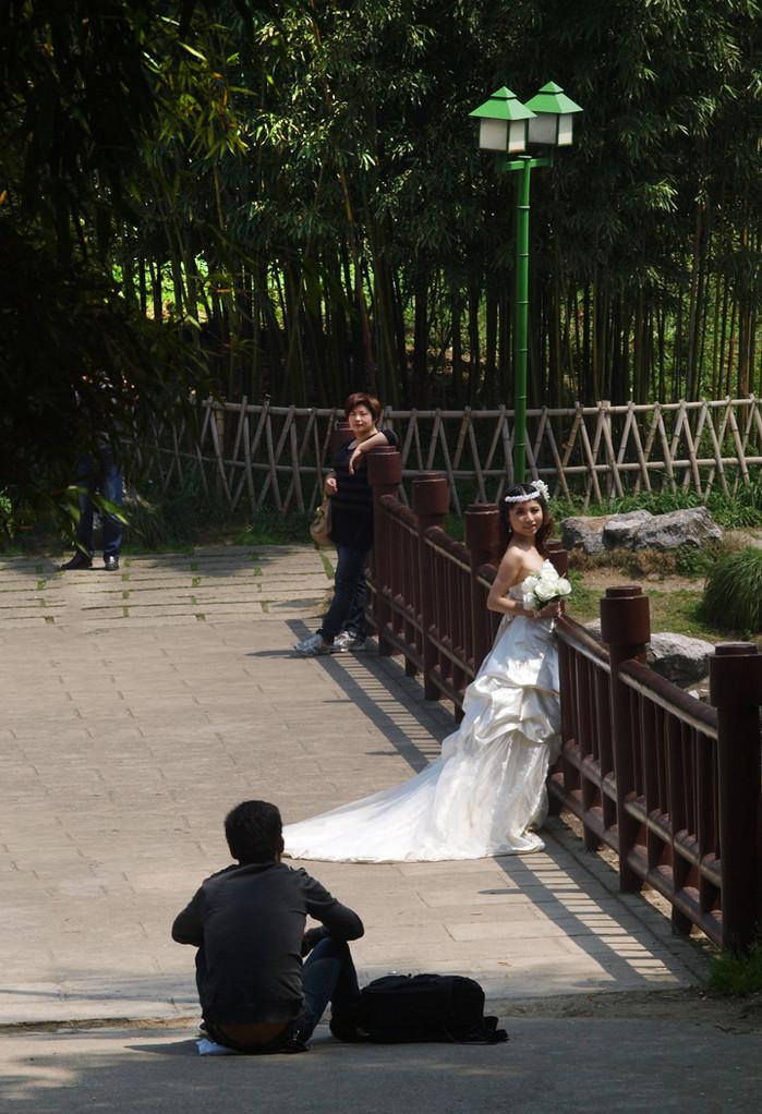 Fotos de boda..