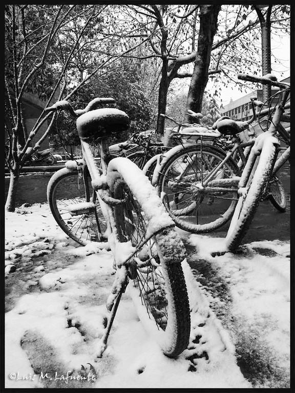 自行车  Llegan las primeras nieves..