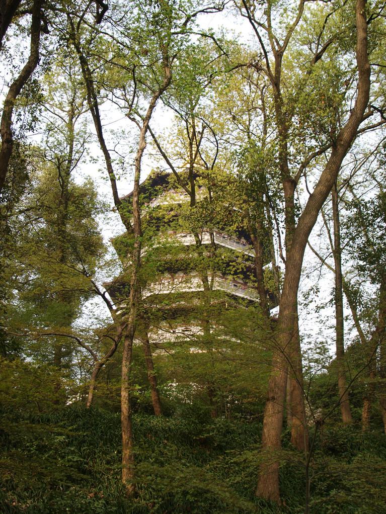 Pagoda Leifeng