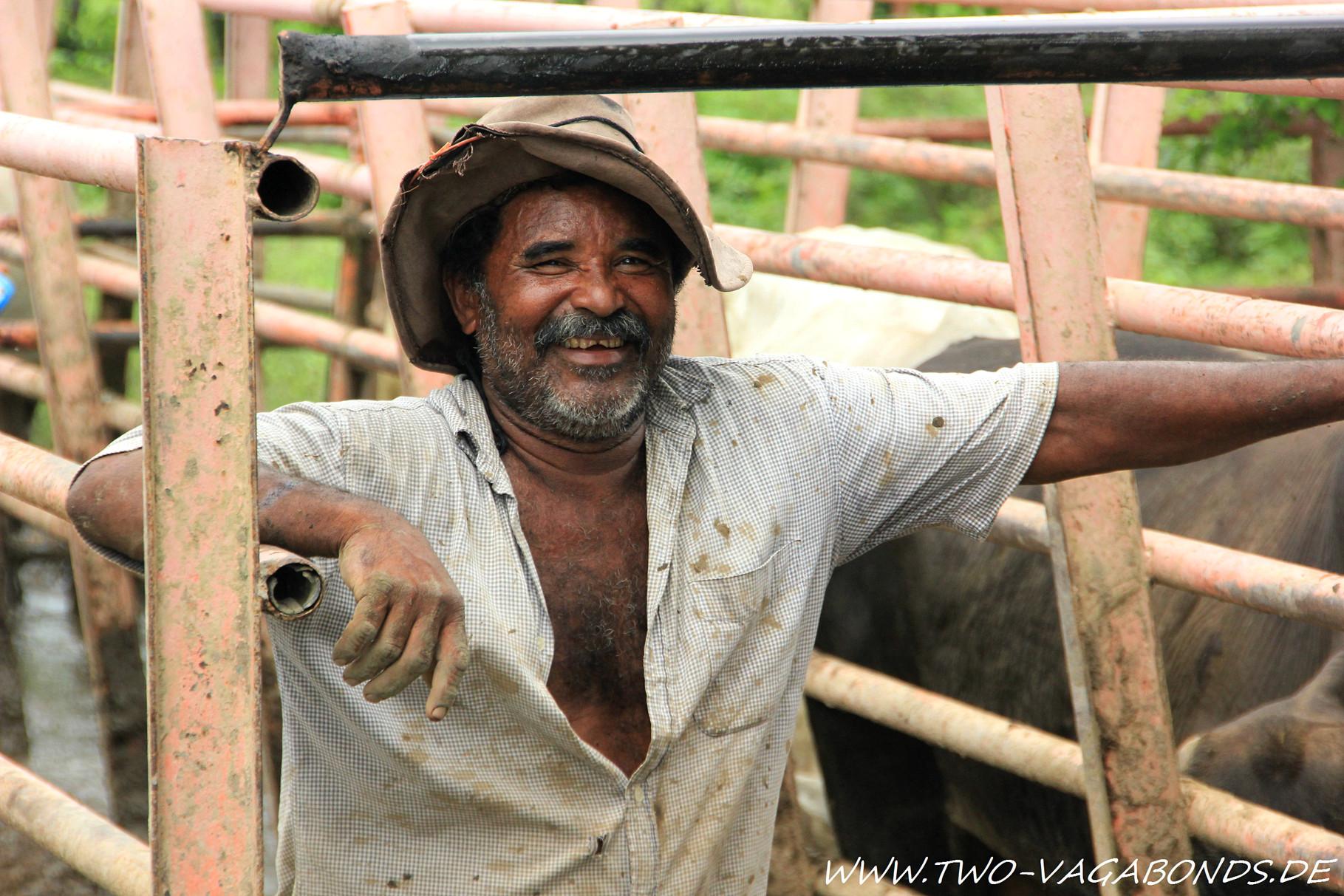 VENEZUELA 2014 - LLANOS COWBOYS