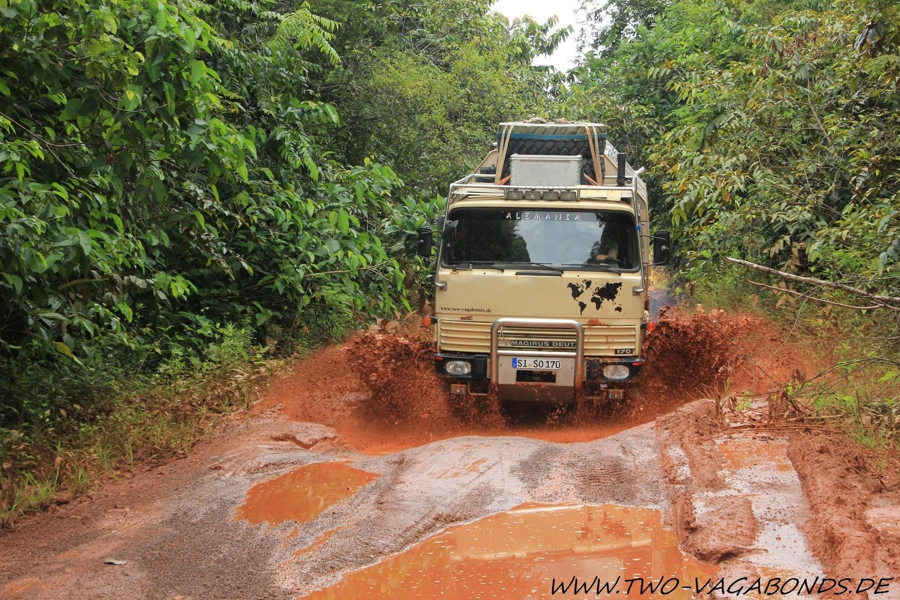 2014 GUYANA - AMAZONAS