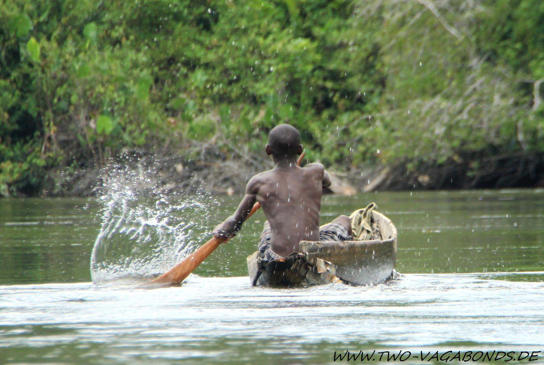 SURINAME 2014 - AMAZONAS