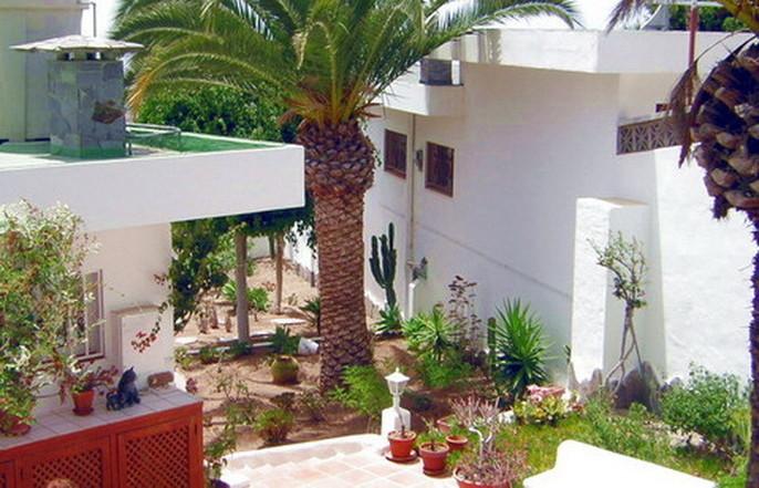 Schön gestalteter Eingangsbereich mit kanarischen Pflanzen.