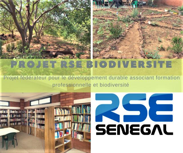 RSE- Réunion des Entreprises RSE du Sénégal (Juillet 2021)