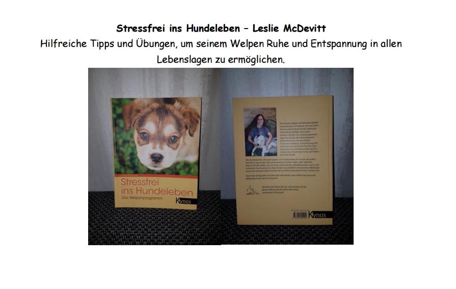 Stressfrei ins Hundeleben - Leslie McDevitt