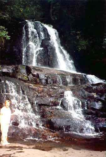 Laurel Falls, Cades Cave Velley