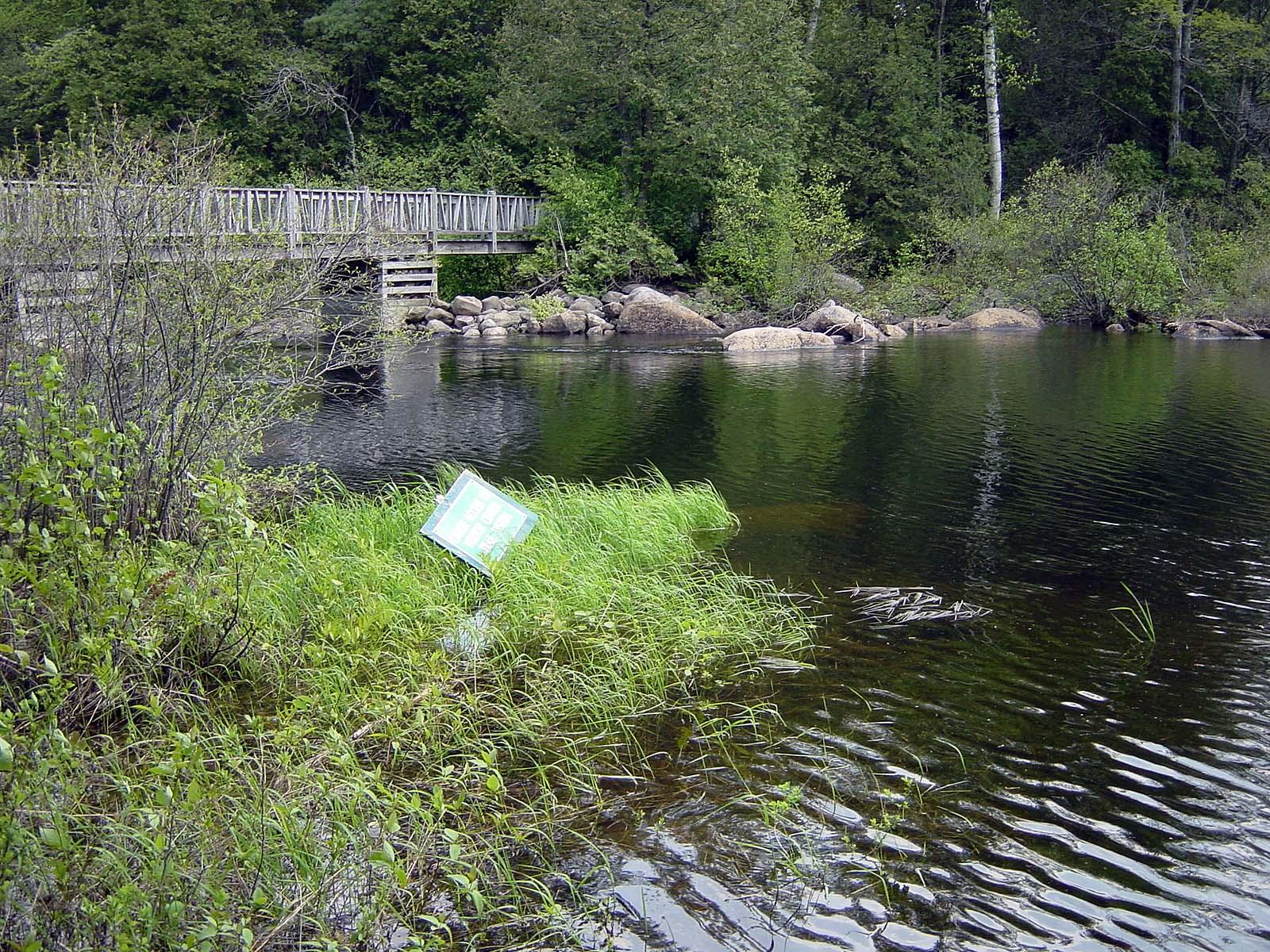 Wanderung auf dem Sucker Brook Trail