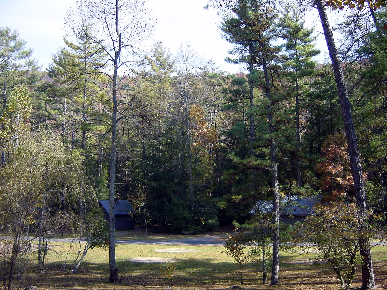 Cottages im Vogel State Park