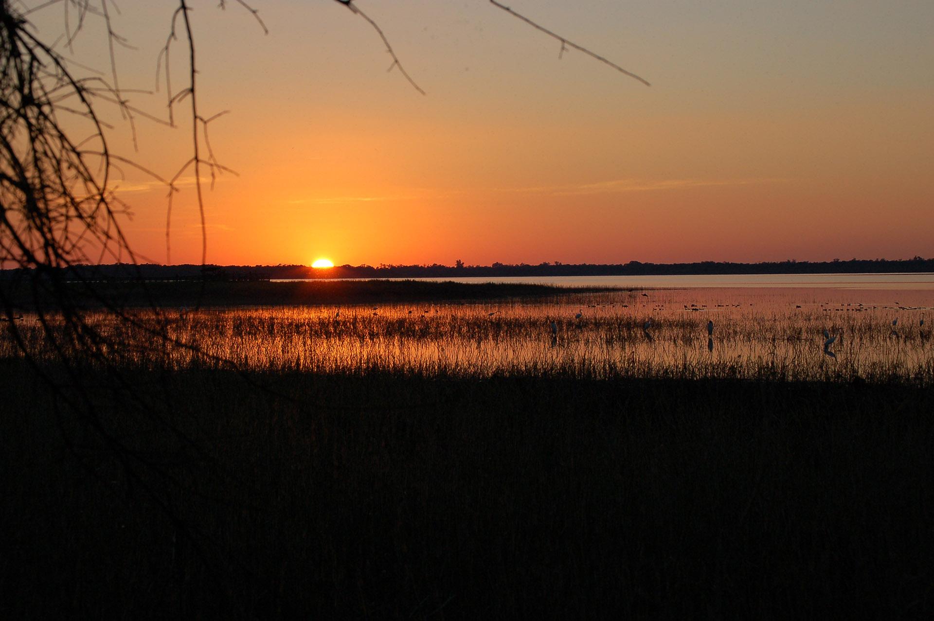 Myakka River State Park, Sarasota County