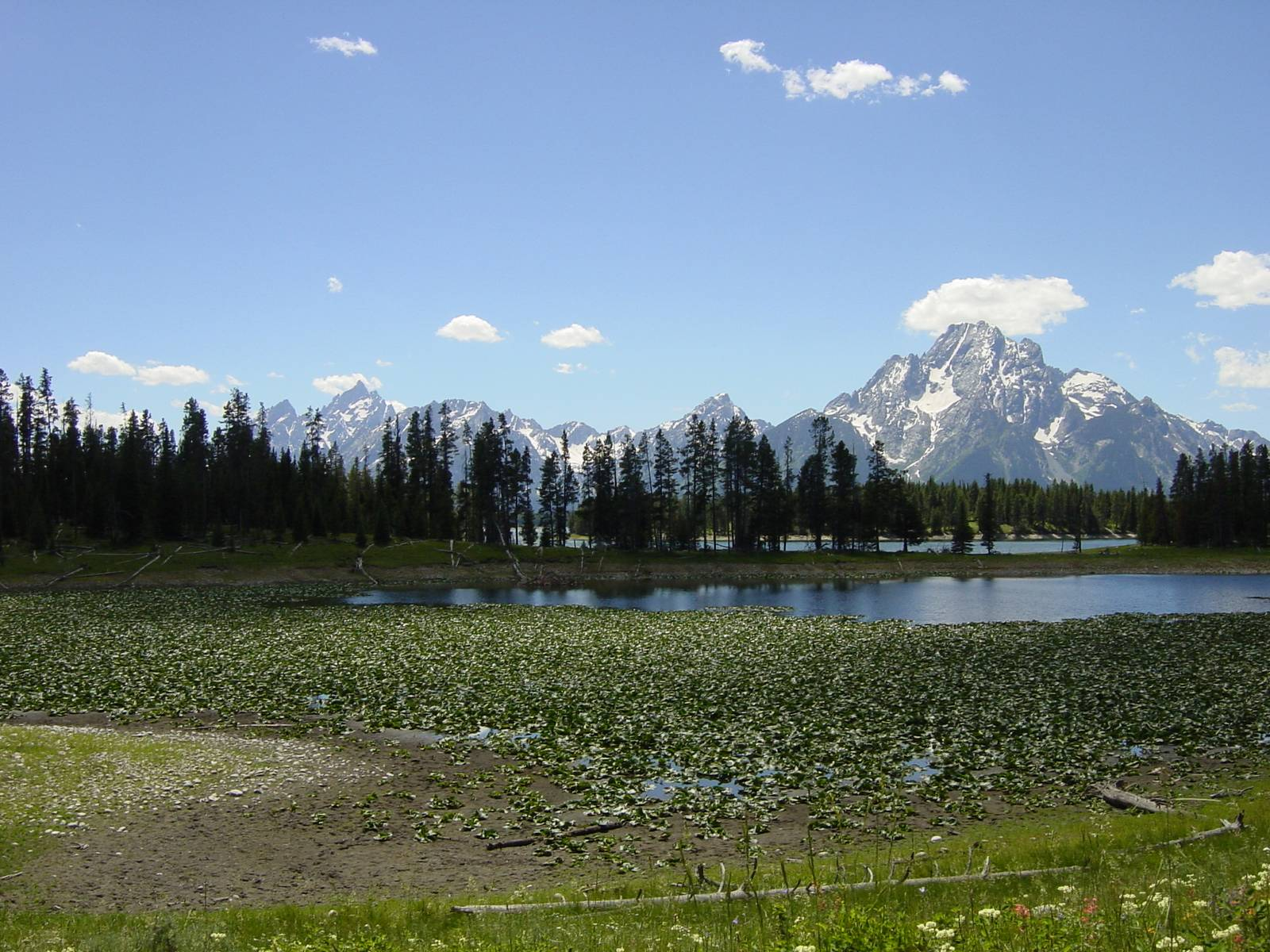 Swan Lake, Grand-Teton-Nationalpark