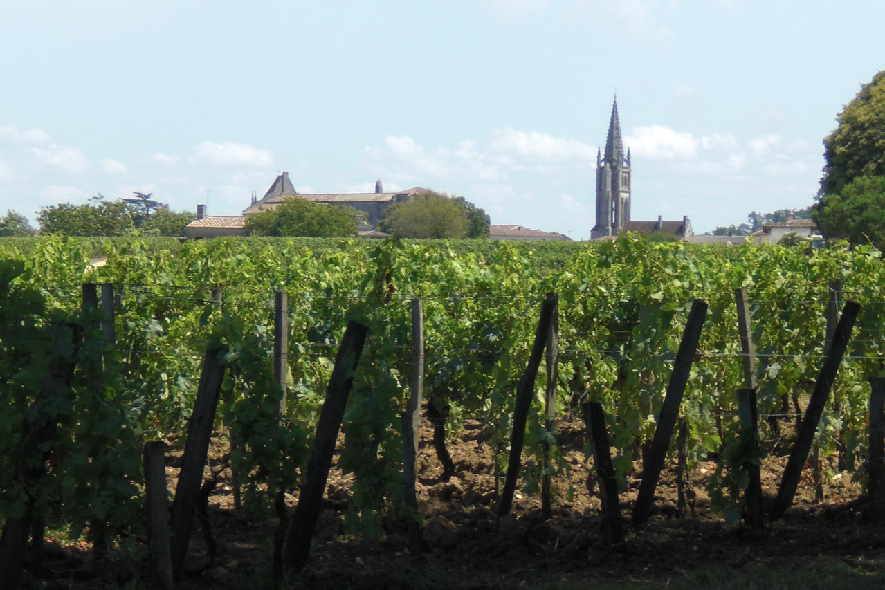 le terroir incomparable de Saint Emilion