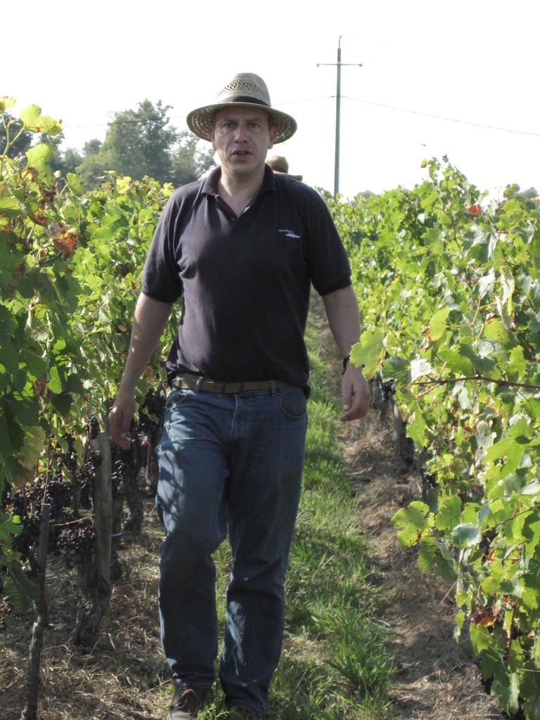 Mais c'est le vigneron qui par sa personnalité donne à son vin son unicité