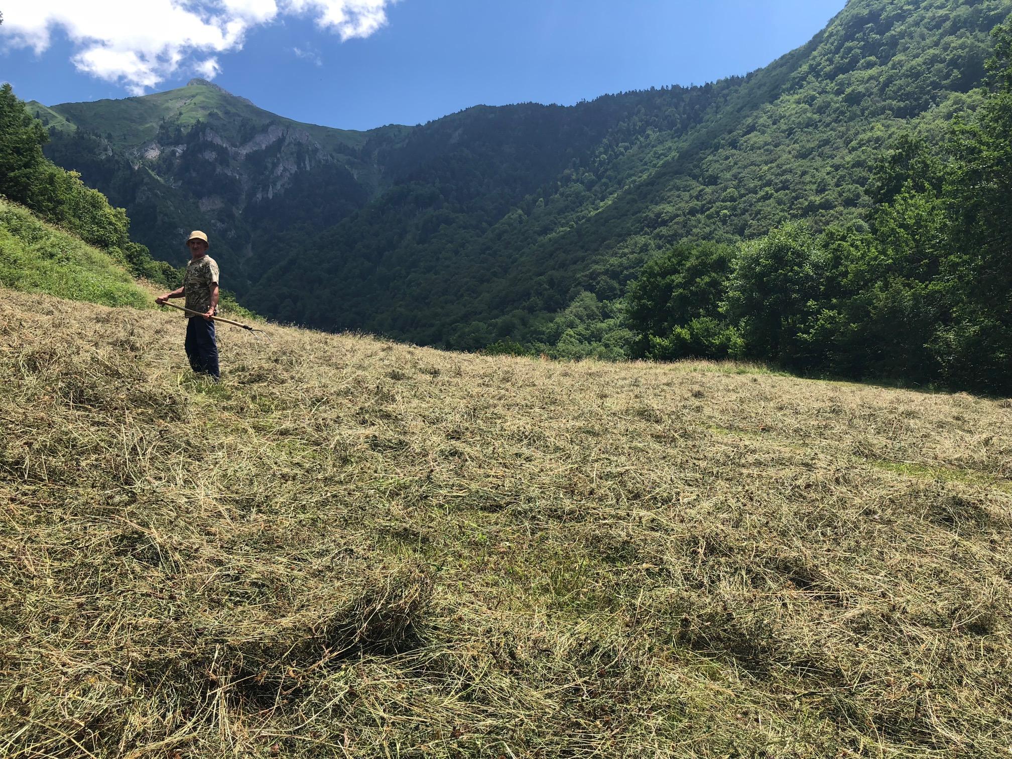 Jean, paysan producteur de fromage en vallée d'Aspe